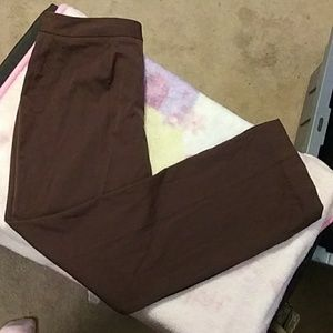 Style and Co. Brown dress pants